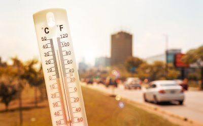 Mit Beton gegen Hitzeinseln